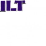 Zilt Investment Limited